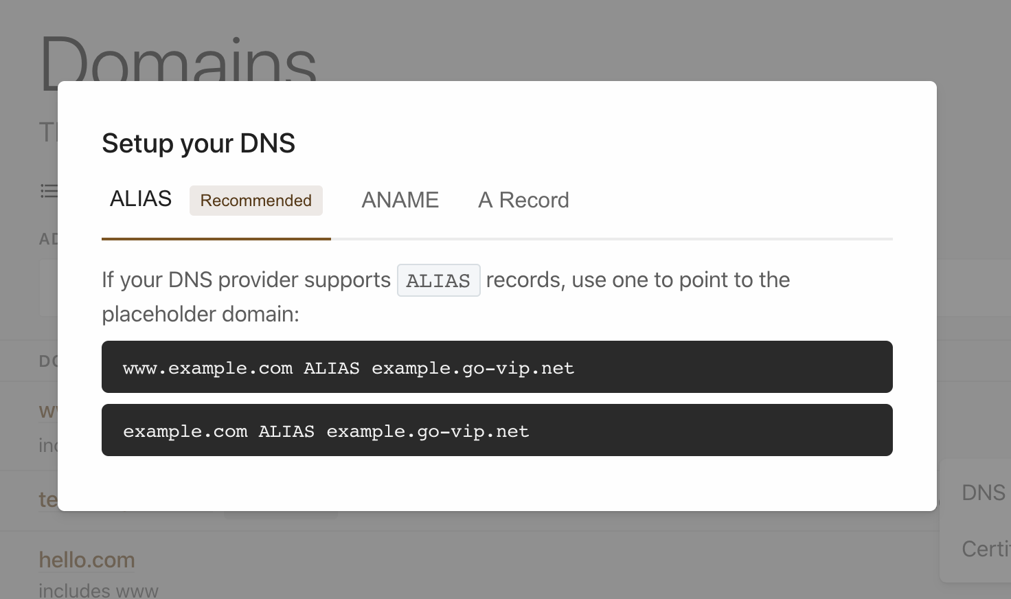 VIP dashboard DNS record screen