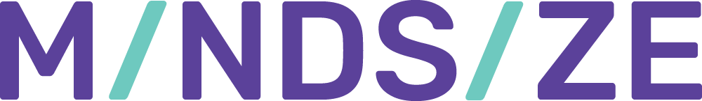 Mindsize word logo